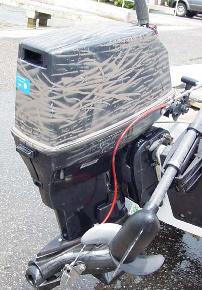 Evinrude 40 30 Hp Jet Outboard