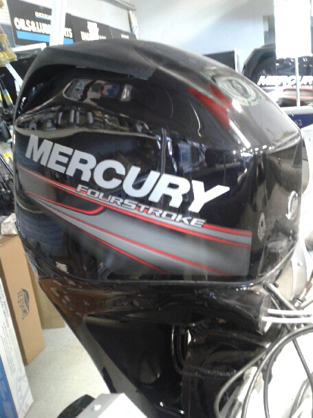 Mercury fish camp motors in canada autos post for Fish without mercury